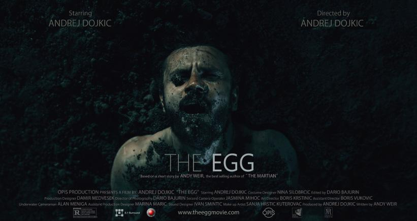 the egg article